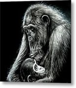 Chimp Love Metal Print