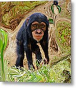 Chimpanzee Metal Print by Daniele Smith