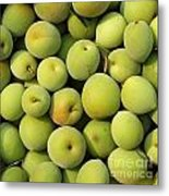 Chinese Green Plums Metal Print by Yali Shi