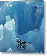Chinstrap Penguins On Blue Iceberg Metal Print