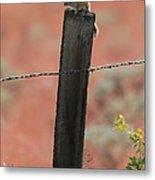 Chipmunk On Fence Post Metal Print
