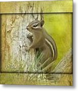 Chippie Metal Print