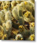 Cholla Cactus Garden Mirage Metal Print