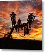 Cholla In Flame Metal Print