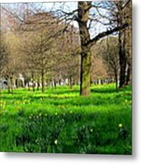 Christchurch Gardens Metal Print