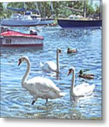 Christchurch Harbour Swans And Boats Metal Print