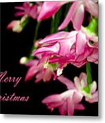 Christmas Cactus Greeting Card Metal Print by Carolyn Marshall