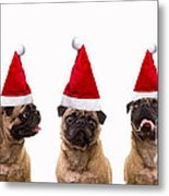 Christmas Caroling Dogs Metal Print