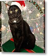 Christmas Cat Metal Print