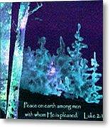 Christmas Forest Metal Print
