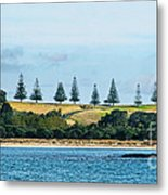 Christmas In A Row.nz Metal Print