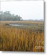 Christmas In The South Metal Print