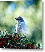 Christmas Mockingbird Metal Print