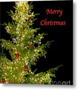 Christmas Tree Lighting Metal Print