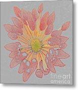 Chrysanthemum As Coloured Pencil Drawing Metal Print
