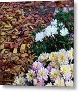 Chrysanthemums In The Forest Metal Print by Ioana Ciurariu