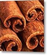 Cinnamon - Cinnamomum Metal Print