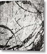 Circles Metal Print by Brett Pfister