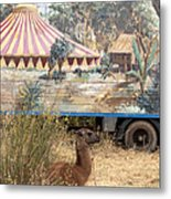 circus circus 2 - A vintage circus wagon with african paint and llama camel  Metal Print