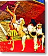 Circus Dog Act Metal Print