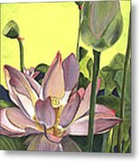 Citron Lotus 2 Metal Print