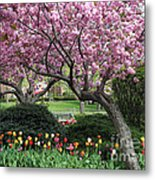 City Blossoms Metal Print