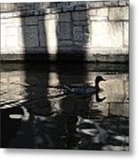 City Ducks Metal Print