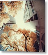 City In Harmony With Nature Metal Print