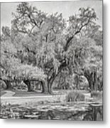 City Park Giants - Paint Bw Metal Print