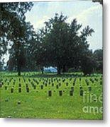 Civil War Gravesites Metal Print
