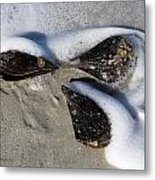Clam Shells And Surf Metal Print