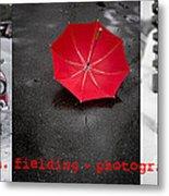 Edward M. Fielding Photography Metal Print by Edward Fielding