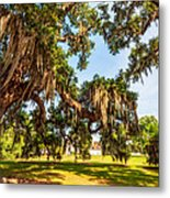 Classic Southern Beauty 2 Metal Print
