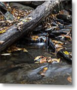 Clean Clear And Natural Metal Print by Andrew Pacheco
