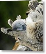 Clean Up Time Metal Print