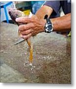 Cleaning Snappers Metal Print