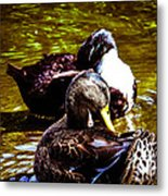 Cleaning Time Metal Print