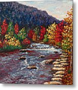 Clear Creek In Golden Colorado Metal Print