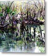 Clear Florida Springs Metal Print