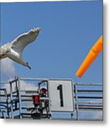 Cleared For Landing Metal Print