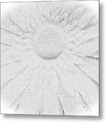 Clearly White Daisy Metal Print