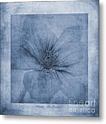 Clematis Cyanotype Metal Print