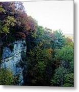 Rock Cliff With Trees Metal Print