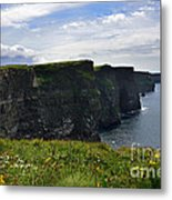 Cliffs Of Moher Looking South Metal Print