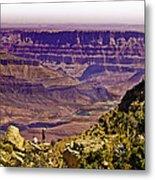 Climbing In Grand Canyon Metal Print