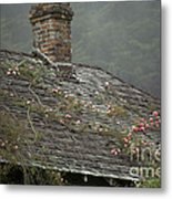 Climbing Roses Metal Print by Ron Sanford