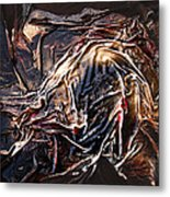 Cloaked In The Wind Metal Print