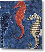 Close-up Of Five Seahorses Side By Side  Metal Print