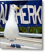 Closeup Of A Seagull On A Fisher Boat  Metal Print