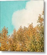 Cloud And Birches Metal Print